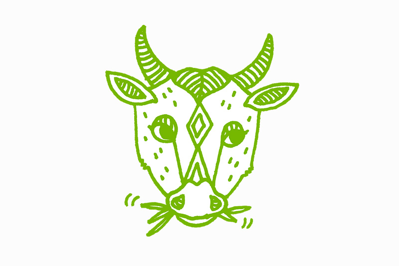 lehmä piirroskuva